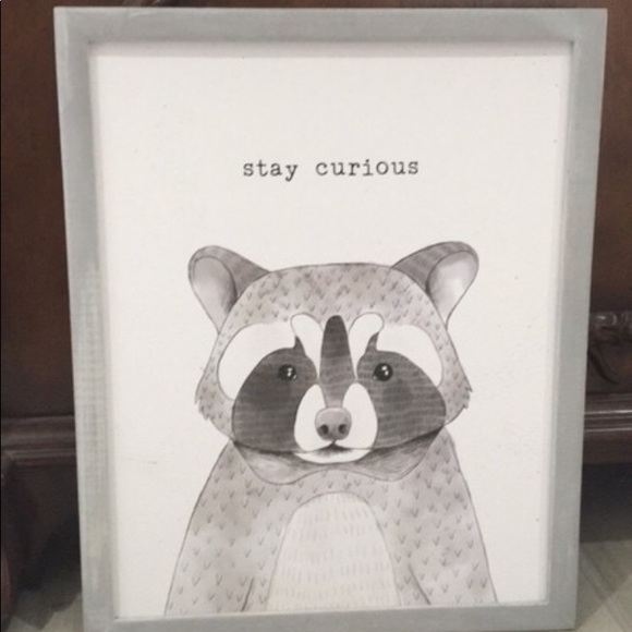 Onlinepartycenter Other - Stay Curious Raccoon Wood Wall Decoration